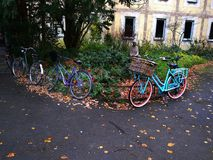 Bikes and the city. Bikes in Germany located among green grass and autumn leaves Royalty Free Stock Photo