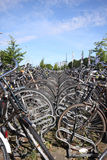 Bikes In The Hague Royalty Free Stock Photo