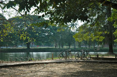 Bikes beside a lake. Some push bikes standing beside a tranquil lake Stock Images