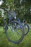 Bikes in the line Stock Photo