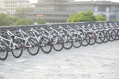 Bikes in line Royalty Free Stock Image
