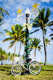 Bikes in the park at Miami Beach Florida Royalty Free Stock Images
