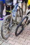 Bikes Royalty Free Stock Image
