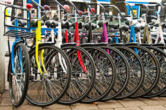 Bikes for rent Royalty Free Stock Image