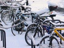 Bikes Snow 1. Row of locked bikes after an overnight snowfall Stock Image