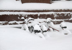 Bikes in Snow Royalty Free Stock Photos