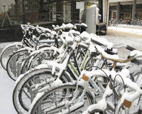 Bikes in snow Stock Image