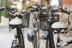 Bikes with snow on seats Royalty Free Stock Photography