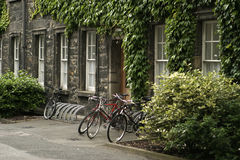 Bikes at Trinity College. Three bicycles parked at Trinity College in Dublin in front of an ivy-covered building stock images