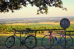Bikes Stock Image