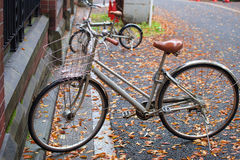 Bikes at university of Tokyo. TOKYO, JAPAN - NOVEMBER 08, 2015: bicycles parking inside university of Tokyo or Todai during raining. here is the first of Japan's Stock Photography