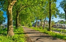 Bikeway вдоль канала Роны - Рейна в Эльзасе, Франции Стоковая Фотография