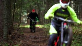 biking δασικό βουνό απόθεμα βίντεο