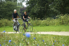 biking πρεσβύτεροι Στοκ Εικόνες