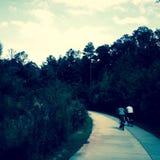 biking photographie stock libre de droits