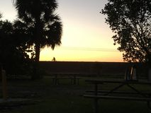 Biking across the Florida Everglades at sunset Royalty Free Stock Images