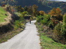 Biking in Apuseni Mountains, Transylvania Stock Photo
