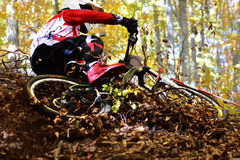 Biking as extreme and fun sport. Downhill biking. Biker jumps. Royalty Free Stock Photography