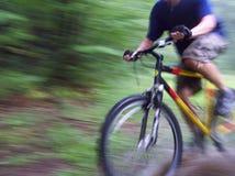 Biking através da floresta Fotografia de Stock Royalty Free