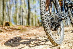 Biking através da floresta imagem de stock