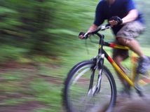 Biking attraverso la foresta Fotografia Stock Libera da Diritti