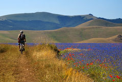 Biking in Castelluccio Royalty Free Stock Images