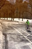Biking in Central Park Royalty Free Stock Photos