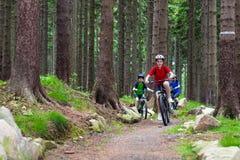 Biking da família Foto de Stock Royalty Free
