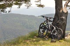 Biking da montanha é liberdade real Foto de Stock Royalty Free
