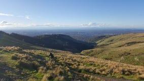 Biking de montanha do homem através dos montes de Victoria de Christchurch imagem de stock royalty free