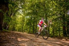 Biking della montagna Fotografie Stock