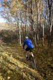 Biking della montagna dell'uomo Fotografia Stock Libera da Diritti