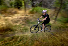 Biking della montagna della giovane donna Fotografia Stock