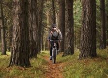 Biking di pratica della montagna dell'uomo Immagine Stock