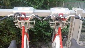 Biking económicamente en Pekín, China imagen de archivo