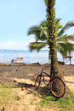 Biking em Bocas Foto de Stock Royalty Free