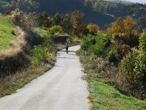 Biking en las montañas de Apuseni, Transilvania Foto de archivo