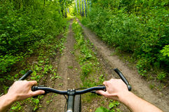 Biking on forest road Royalty Free Stock Photos