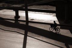 Biking nel bejing Fotografie Stock
