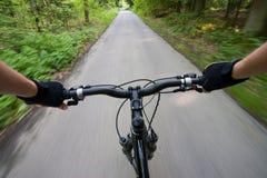 Biking op de weg in bos Stock Afbeeldingen