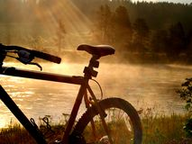 Biking in Paradise. Sun rays display a bike seat stock photography
