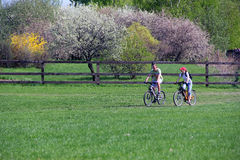 Biking in a park. Man and women are biking in a park in spring Royalty Free Stock Photo