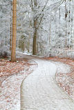 Biking path in frosted forest. Biking path in frosted winter forest Royalty Free Stock Photos