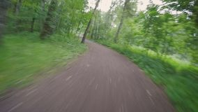 Biking POV in the park after a violent storm stock video footage