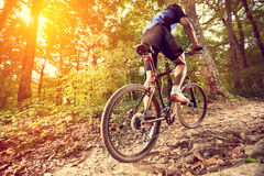 Biking Stock Image
