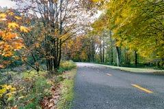 Biking road through autum. Biking down a road under maple tree i fall Royalty Free Stock Image