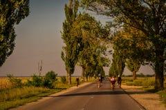 Biking in Romania Stock Photography
