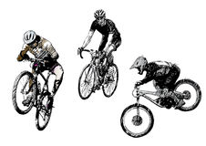 Biking trio Stock Photography