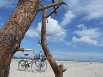 Biking up the coast. Two bicycles parked up in beautiful nature stock images