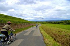 Biking in vineyards Royalty Free Stock Photo